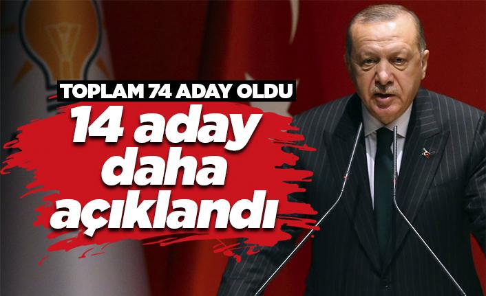 AK Parti'de 14 aday daha açıklandı