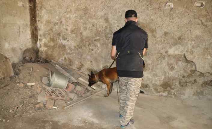 """Bolu'da narkotik köpekleri """"Sezar"""" ve """"Artos"""" ile denetim yapıldı"""