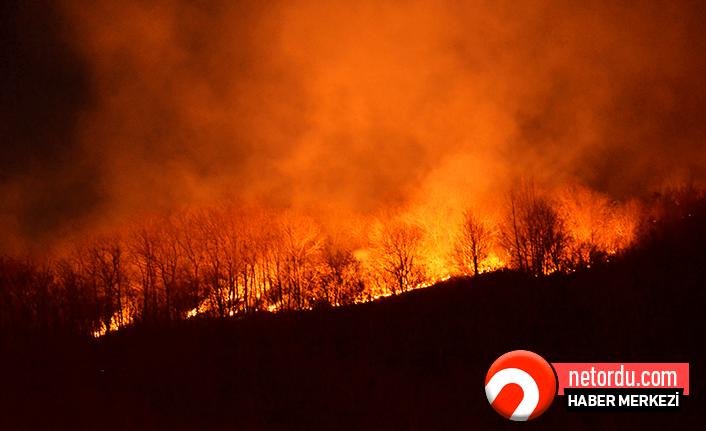 Çatalpınar ormanları cayır cayır yanıyor!