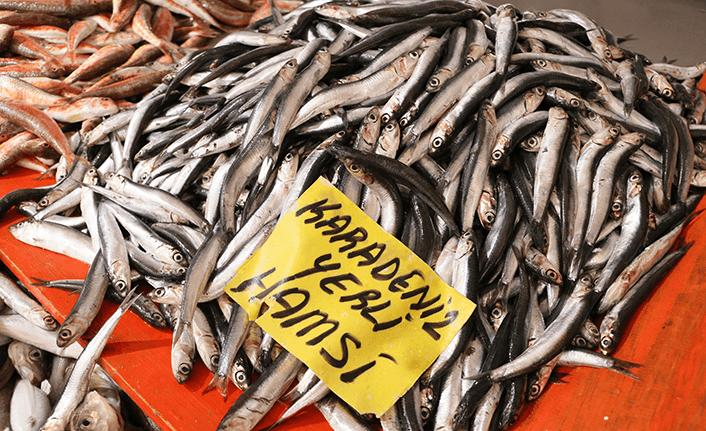 """Karadenizli balıkçılar sezonu """"kötü"""" geçiriyor"""