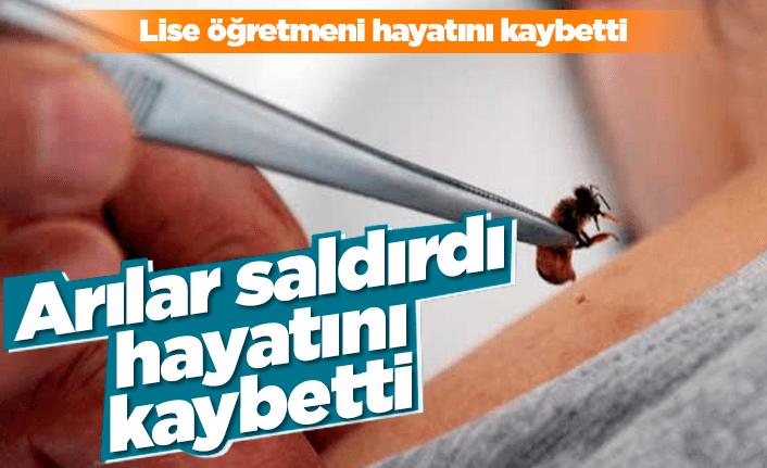 Arılar saldırdı hayatını kaybetti