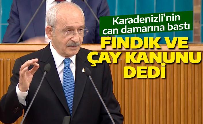 Kılıçdaroğlu'dan Fındık ve Çay Kanunu teklifi