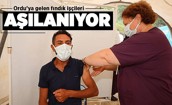 Fındık işçilerine COVİD-19 aşısı yapılıyor
