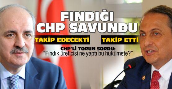 Fındığı CHP savundu!