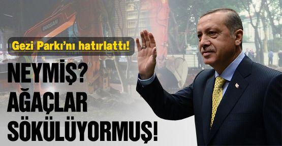 Gezi Parkı'nın yıldönümünü hatırlattı!