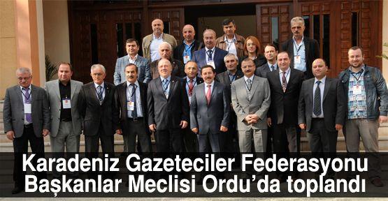 Karadenizli gazeteciler Ordu'da toplandı
