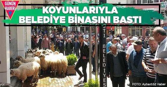 Koyunlarıyla belediyeyi bastı
