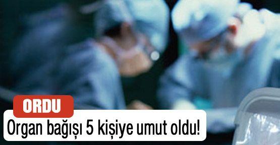 Organları 5 kişinin umudu oldu!