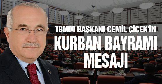 TBMM Başkanı Cemil Çiçek'in mesajı