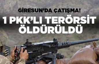 Giresun'ta çatışma! 1 terörist öldürüldü!