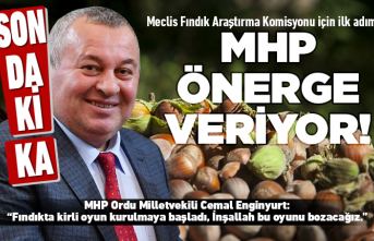 Fındık için MHP'den büyük adım!