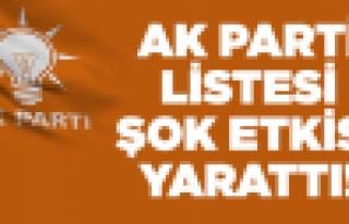 İşte AK Parti'nin milletvekili listesi