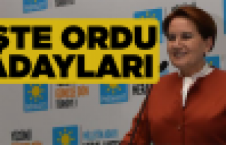 İyi Parti'de Yener Yıldırım liste başı!
