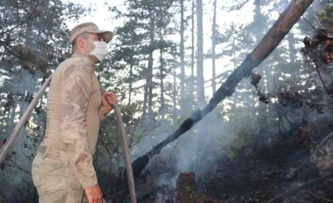 GÜNCELLEME - Kastamonu'da çıkan orman yangınına müdahale ediliyor