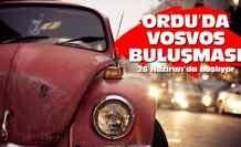 Vosvos Şenliği için geri sayım başladı
