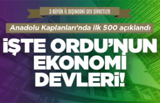 Anadolu Kaplanları'nda 8 Ordu firması yer aldı
