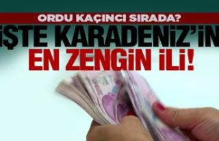 İşte Karadeniz'in en zengin illeri!