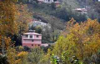 Trabzon'da sonbahar renkleri görsel şölen...