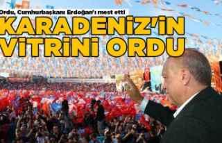 Ordu, Cumhurbaşkanı Erdoğan'ı mest etti!