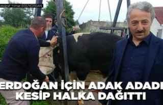 Erdoğan için adak adadı, kesip halka dağıttı