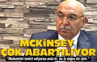 """Yediyıldız: """"McKinsey bence çok abartılıyor"""""""