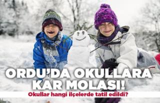 Ordu'da okullara kar molası!