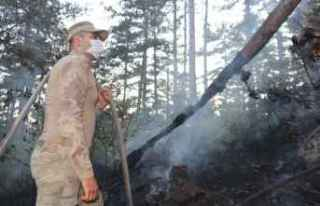 GÜNCELLEME - Kastamonu'da çıkan orman yangınına...