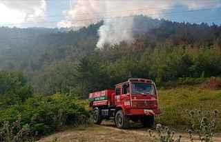 Orman yangını 12 saatte söndürüldü