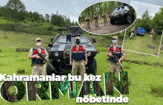 Ordu'da Mehmetçik bu kez 'orman nöbeti'nde