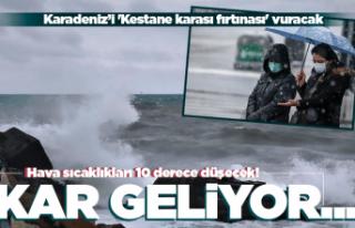 Karadeniz'i 'Kestane karası fırtınası'...
