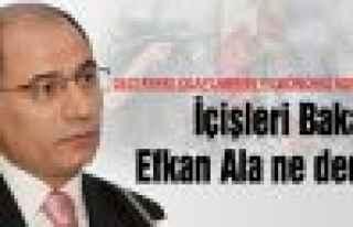 Ala, Gezi olaylarının yıldönümü için ne dedi?