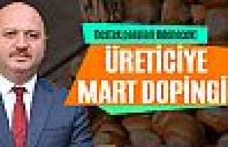 Fındık üreticisine Mart dopingi!