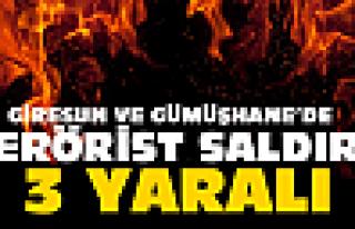 Giresun ve Gümüşhane'de terörist saldırı