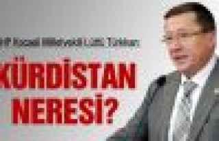 MHP'li Türkkan: