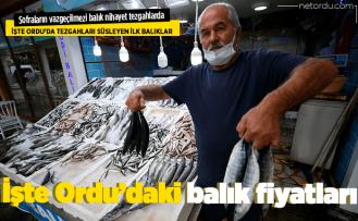 Sezon açıldı tezgahlar balıkla doldu