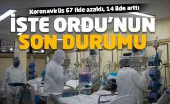 Koronavirüs'te Ordu'nun son durumu ne?