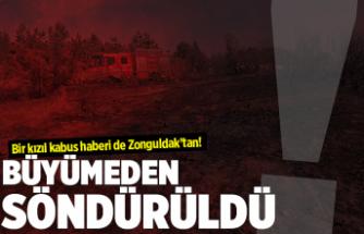 Bir orman yangını da Zonguldak'ta çıktı!