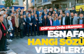 CHP'lilerden Ordu çıkarması!