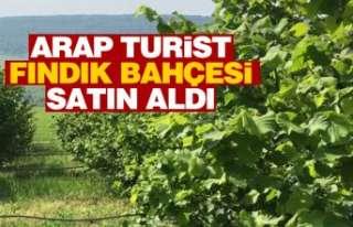 Arap turist fındık bahçesi aldı