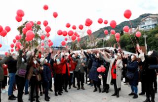 Kırmızı balonlar Demir Ali için uçtu