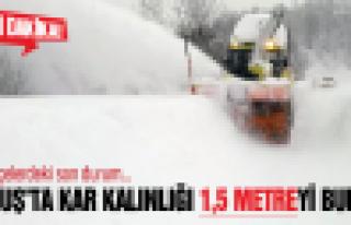 Akkuş'ta kar kalınlığı 1,5 metreyi buldu!