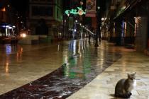 Ordu'da caddelerde sessizlik hakim