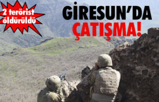 Giresun'da 2 terörist öldürüldü