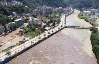 Giresun'daki selden zarar gören Doğankent'te...