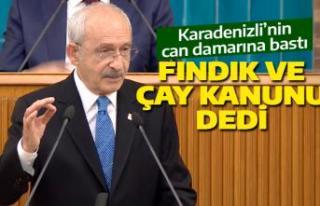 Kılıçdaroğlu'dan Fındık ve Çay Kanunu...