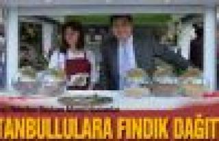Başkan Murat Hazinedar, fındık dağıttı
