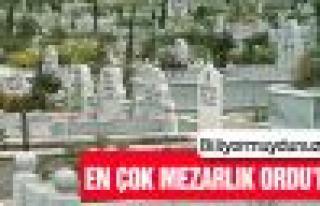 Türkiye'nin mezarlık rekoru Ordu'nun!