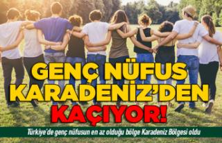 Genç nüfus Karadeniz'den kaçıyor!