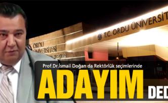 Prof.Doğan da ODÜ rektör adayı!